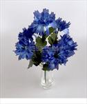 Uk kytice chrpa X6/32cm - velkoobchod, dovoz květin, řezané květiny Brno