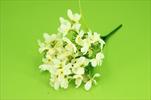 Uk sněženka x7 35cm - velkoobchod, dovoz květin, řezané květiny Brno