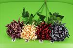 Uk chryzantéma jehla lux - velkoobchod, dovoz květin, řezané květiny Brno
