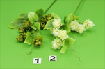 Uk Chmel větev - velkoobchod, dovoz květin, řezané květiny Brno