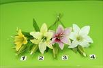 Uk Lilie - velkoobchod, dovoz květin, řezané květiny Brno