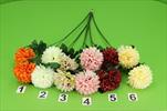 Uk chryzantéma větev X2 - velkoobchod, dovoz květin, řezané květiny Brno
