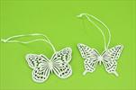 DO Motýl závěs - velkoobchod, dovoz květin, řezané květiny Brno