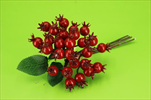 UK HLOH - velkoobchod, dovoz květin, řezané květiny Brno