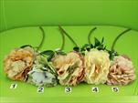 DO Pivoňka  - velkoobchod, dovoz květin, řezané květiny Brno