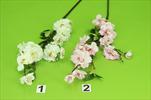 Uk Jabloňová větev 60cm - velkoobchod, dovoz květin, řezané květiny Brno
