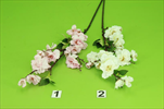 Uk jabloňový květ 60cm - velkoobchod, dovoz květin, řezané květiny Brno