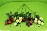 Uk větev růže X5/64cm - velkoobchod, dovoz květin, řezané květiny Brno