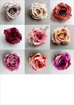 Uk květ růže 9cm - velkoobchod, dovoz květin, řezané květiny Brno