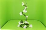 Uk Girlanda magnolie růžová - velkoobchod, dovoz květin, řezané květiny Brno
