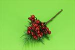 Uk jeřabina - velkoobchod, dovoz květin, řezané květiny Brno