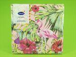 DO UBROUSKY 33X33CM 20KS Aloha Floral - velkoobchod, dovoz květin, řezané květiny Brno