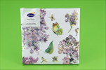 DO UBROUSKY 33X33CM 20KS Sweet Butterfly - velkoobchod, dovoz květin, řezané květiny Brno