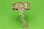 St stuha Deco 40mm/5m - velkoobchod, dovoz květin, řezané květiny Brno