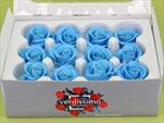 Sk Hlavy růže mini light blue 12pcs - velkoobchod, dovoz květin, řezané květiny Brno