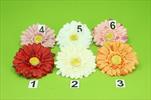 Uk květ gerbera 10,5cm - velkoobchod, dovoz květin, řezané květiny Brno