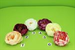 Uk květ pivoně - velkoobchod, dovoz květin, řezané květiny Brno