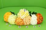 Uk chryzantéma - velkoobchod, dovoz květin, řezané květiny Brno