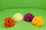 Uk květ chryzanthéma - velkoobchod, dovoz květin, řezané květiny Brno