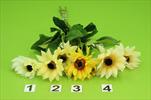 Uk Terčovka - velkoobchod, dovoz květin, řezané květiny Brno