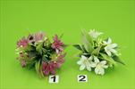 Uk lilie mini 23cm - velkoobchod, dovoz květin, řezané květiny Brno
