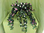 Uk růže popínavá 70cm - velkoobchod, dovoz květin, řezané květiny Brno