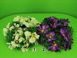 UK Věnec cosmos 28cm - velkoobchod, dovoz květin, řezané květiny Brno