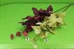 UK eukalypt x3 86cm - velkoobchod, dovoz květin, řezané květiny Brno