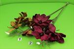 UK magnolie x4 88cm - velkoobchod, dovoz květin, řezané květiny Brno