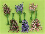 UKČ BOBULE ZÁPICH 12CM MIX /36 - velkoobchod, dovoz květin, řezané květiny Brno