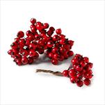 Jeřabina zápich 0,8cm/144ks červená - velkoobchod, dovoz květin, řezané květiny Brno