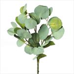 Eucalyptus populus umělý 50cm - velkoobchod, dovoz květin, řezané květiny Brno