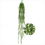 Zeleň převis x3/ 85cm - velkoobchod, dovoz květin, řezané květiny Brno