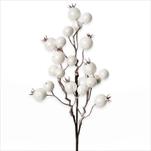 Jeřabiny zápich bílá 31cm - velkoobchod, dovoz květin, řezané květiny Brno