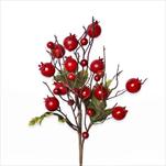 Šípky větev červená 35cm - velkoobchod, dovoz květin, řezané květiny Brno