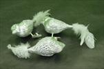 Ptáček na klipu sklo/peří 3ks/10cm stříbrná - velkoobchod, dovoz květin, řezané květiny Brno