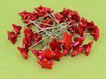Hvězdičky zápich plast 3x7,5cm S/36 červená - velkoobchod, dovoz květin, řezané květiny Brno