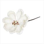 Květ latex zápich pr.5V20cm bílá - velkoobchod, dovoz květin, řezané květiny Brno