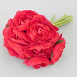 Ranunculus svazek S/10 červená - velkoobchod, dovoz květin, řezané květiny Brno