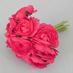 Ranunculus svazek S/10 tm.růžová - velkoobchod, dovoz květin, řezané květiny Brno