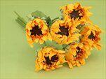 Slunečnice svazek S/6 žlutá - velkoobchod, dovoz květin, řezané květiny Brno