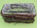 Truhlík proutí hnědá/zelená - velkoobchod, dovoz květin, řezané květiny Brno