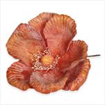 Květ latex zápich oranžová - velkoobchod, dovoz květin, řezané květiny Brno