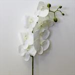 Orchidej umělá 102cm bílá - velkoobchod, dovoz květin, řezané květiny Brno
