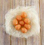 Vajíčka přízdoby pvc/sisal 12ks/2,5cm natural - velkoobchod, dovoz květin, řezané květiny Brno