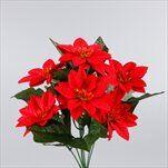 Poinsettia kytice x7 34cm červená - velkoobchod, dovoz květin, řezané květiny Brno