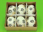 Vajíčka real 6ks/6cm bílá/černá - velkoobchod, dovoz květin, řezané květiny Brno