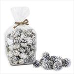 Dekorační sušené plody 3,5cm bílá - velkoobchod, dovoz květin, řezané květiny Brno