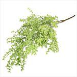 Eucalyptus mini umělý 95cm zelená - velkoobchod, dovoz květin, řezané květiny Brno
