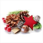 Přízdoby vánoční 400g natural /červená - velkoobchod, dovoz květin, řezané květiny Brno